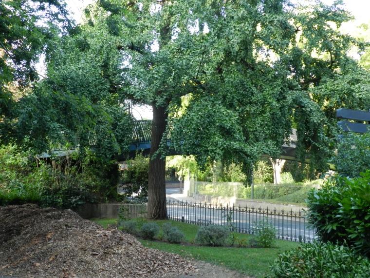 jardin boulingrin